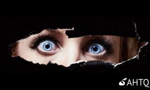 Article - Terrorisme - accompagnez vos sujets vers le mieux-être